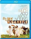 から騒ぎ [Blu-ray]
