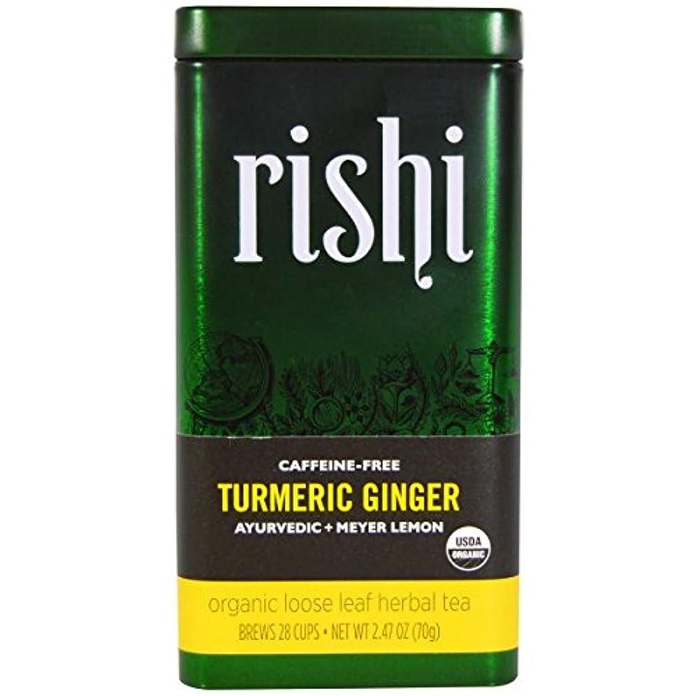 Rishi Tea,Og2,Turmeric Ginger 2.47 Oz (Pack Of 6)
