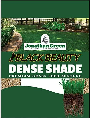 Jonathan Green JOG10600 40600 Dense Shade 3 3-Po lb Grass Seed Oakland Mall Max 86% OFF
