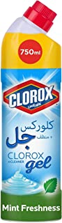 Clorox Multi-Purpose Bleach Gel Disinfectant Cleaner, Kills 99.9% Germs and Viruses, Mint Freshness Scent, 750ml