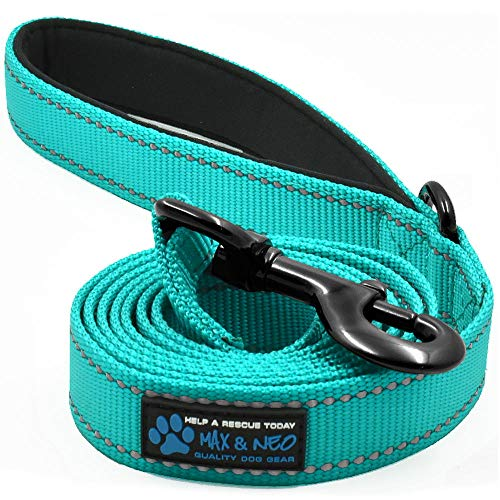 Max and Neo Small Dog Reflective Nylon Dog Leash - We Donate a Leash to a Dog Rescue for Every Leash Sold (Teal, 6x5/8)