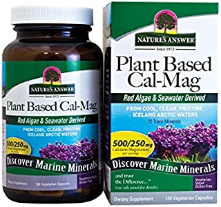 Plant Based Cal-Mag 120 Vegetarian Caps by Nature's Answer