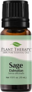 Plant Therapy Sage Dalmatian Essential Oil 10 mL (1/3 oz) 100% Pure, Undiluted, Therapeutic Grade