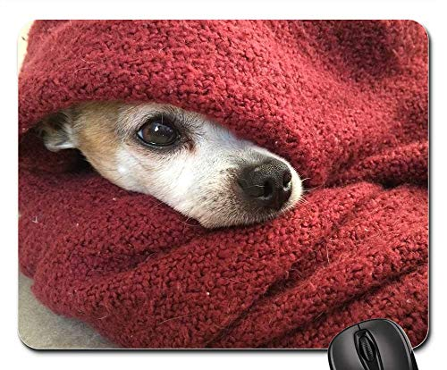 Mouse Pad - Chihuahua Dog Blanket Cold Winter Red Pet Canine