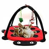 omeny Pet faltbar Living Pop Up Cat Kitten Play Cube Hängematte Kratzbaum Beatle Zelt
