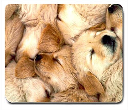 golden retriever puppy dog 1 mousepad mouse pad mousemat mouse mat