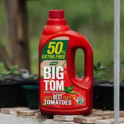 Big Tom Super Tomate Food 1,25 L +50% Extra Gratis   1.9 L   Westland