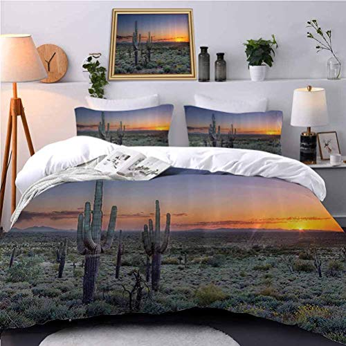 UNOSEKS LANZON Duvet Cover Set Sunover The Phoenix Valley in Ariza Seen from Silly Mountain State Park Duvet Quilt Comforter Cover for Guest Room - King Size