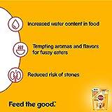 Pedigree Junior Hundefutter Huhn und Reis in Gelee, 24 Beutel (24 x 100 g) - 3