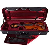 PACATO Livorno Violinetui 4