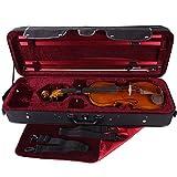 PACATO Livorno Violinetui 4/4 schwarz/rot