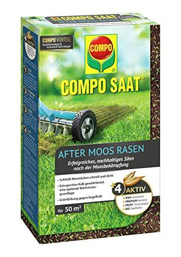 Compo SAAT After Moos Rasen, Spezielle Nachsaat-Mischung nach der Moosbekämpfung, 1 kg, 50 m²