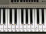 Piano adhesivo para 49 / 61/ 76 / 88 llave teclados – transparente y extraíble...