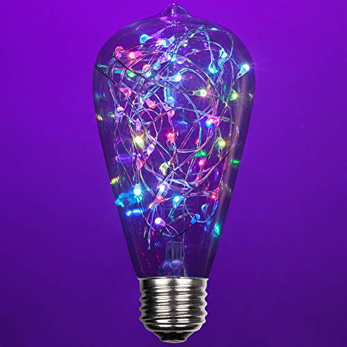 LEDimagine Fairy String Light Bulb Fairy Lights, LED Globe...