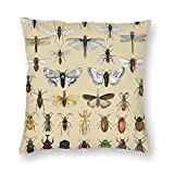 Harla Entomology Insect Studies Collection Velvet Soft Decorative Square Throw Pillow Case Cushion Cover Pillowcase for Livingroom Sofa Bedroom with Invisible Zipper 20x20 Inches