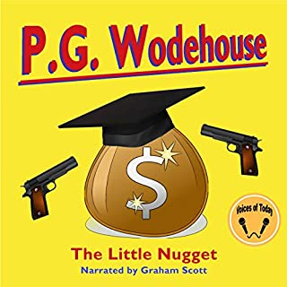 The Little Nugget audiobook cover art