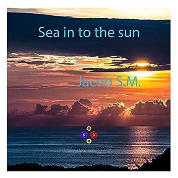 Sea in to the Sun