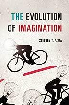 The Evolution of Imagination