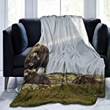 Fleece Blanket 50' x 60' Norway Musk Oxen Musk Oxen Dovre Home Flannel Fleece Soft Warm Plush Throw Blanket for Bed/Couch/Sofa/Office/Camping