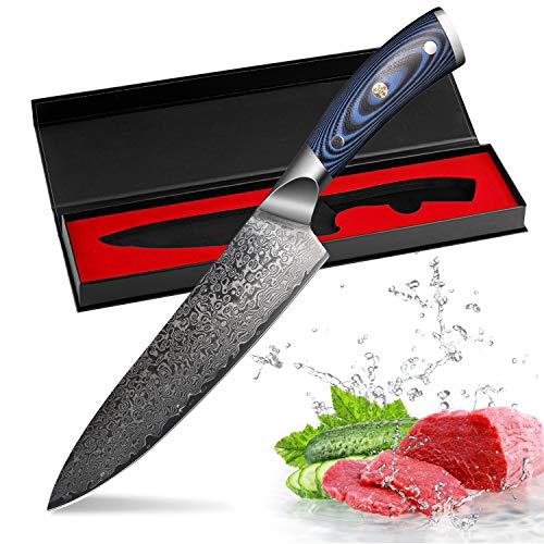 FineTool Kitchen Knife 8 Inch Professional Chef Knives Japanese Damascus VG10 67 Layer Stainless Steel Knives Ultra Sharp Micarta Handle (Blue, 8 Inch Chef Knife)