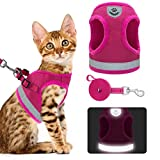 Best Cat Harnesses - KOOLTAIL Cat Harness Dog Harness and Leash Set Review