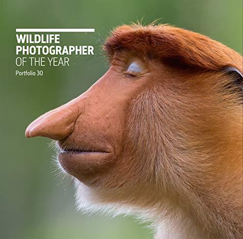 Wildlife Photographer of the Year: Portfolio 30 (30)