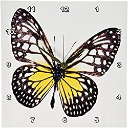 3dRose DPP_44803_1 Vintage Brown N Yellow Butterfly-Wall Clock, 10 by 10-Inch