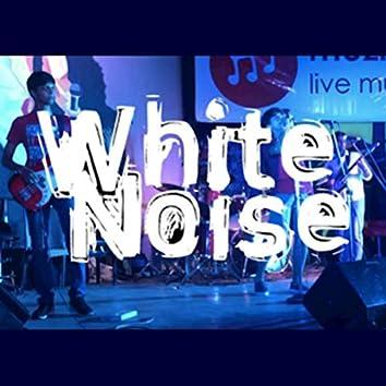 White Noise (LIVE)