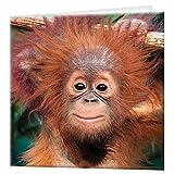 tarjeta de felicitación de 3D LiveLife - orangután del bebé, tarjeta lenticular 3D del mono colorido de Deluxebase, para cualquier ocasión y edad. ¡Ilustraciones originales autorizadas del artista ren
