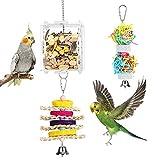 Pawaboo Juguetes Pájaros, Juguetes de Forrajeo Colgante Mascotas, Lleva una Caja de Acrílico Porta Alimentos, Juego de Jaula de Crecimiento Inteligente para Anchoas, Periquitos, Cacatúas - Multicolor