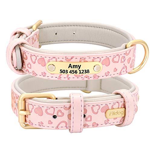 Didog Collar de perro de cuero acolchado suave y cómodo con proceso de repujado - Collar personalizado para perros y gatos grabado para mascotas - vibrante selección de 5 colores para todas las razas