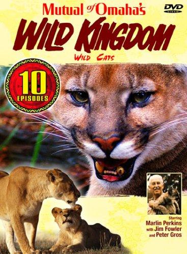 Wild Cats [RC 1]