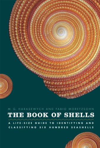 Compare Textbook Prices for The Book of Shells: A Life-Size Guide to Identifying and Classifying Six Hundred Seashells 1 Edition ISBN 8601411049521 by Harasewych, M. G.,Moretzsohn, Fabio