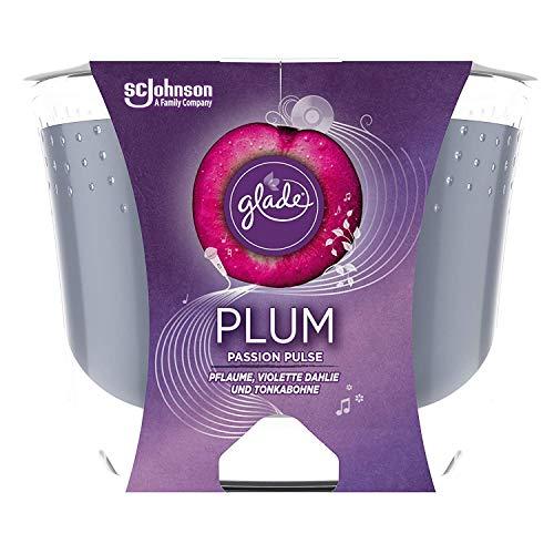 Glade (Brise) Langanhaltende Duftkerze im Glas, Plum Passion Pulse, bis zu 39 Stunden Brenndauer, 4er Pack (4 x 224g)