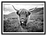 Scottish Highland Cow Art Print Poster Canvas Print Wall Art, Unframed, for Wall Decor Home Decor (Cow2, 20x30 inch)