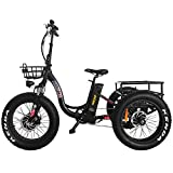 Addmotor Motan 3 Wheel Electric Bicycle, Ebike 750W 48V 16Ah Removable...