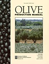 olive production