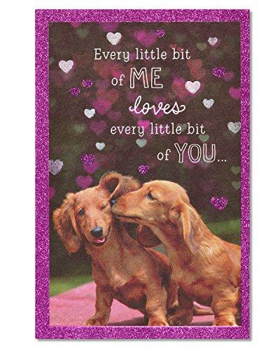 American Greetings Grußkarte mit Glitzer Geburtstagskarte mit Dachshund-Motiv