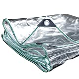 ターポリン、透明色防水スーパー防水ヌールタープテントキャンプハンモックプールガーデンカーバイクボートカバー(色:クリアサイズ:0.8×3.8m)