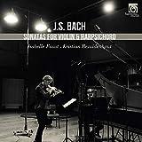Sonata for violin & harpsichordSonata per violino e cembalo BWV 1014 > BWV 1019