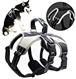 Best Escape-Proof Dog Harness 2020: Reviews & Topicks 14