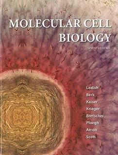 Molecular Cell Biology (Loose Leaf) 7th (seventh) Edition by Lodish, Harvey, Berk, Arnold [2012]