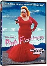 Pink Flamingo (DVD) (WS)