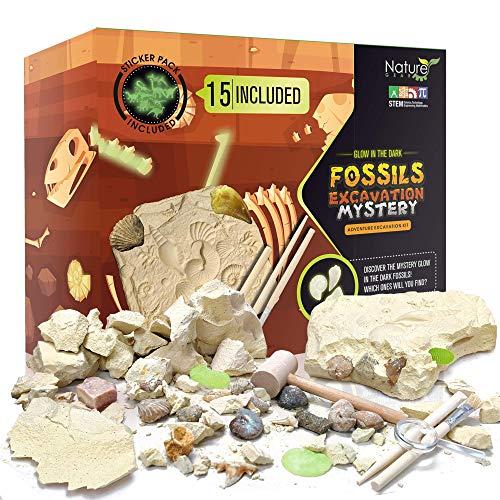 Nature Gear 15 fósiles misteriosos + bono que brilla en la oscuridad – kit de aventura de excavación – Science STEM Learning Kids Activity