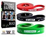 Ryher Set de Bandas elasticas para Crossfit, dominadas, Asistente para pullups o Levantamiento de Pesas – Bandas de Resistencia - Incluye Manual y Bolsa