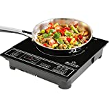 Duxtop 1800W Portable Induction Cooktop Countertop Burner, Silver 8120MC/BT-180G3