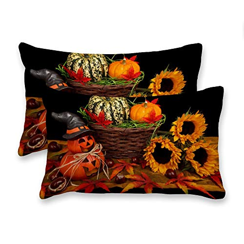 Yilooom Decorative Lumbar Pillow Covers Cases Set, Pack Of 2 Canvas Vintage Autumn Rectangular Accent Throw Pillow Covers Cushion Cover For Couch Bed Sofa Living Room,16x24 Inch