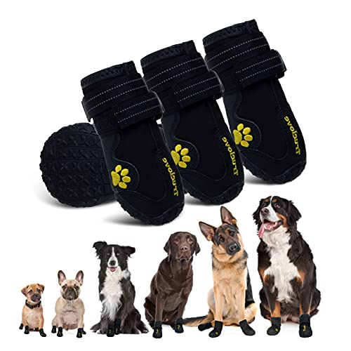 Most Durable Dog Boots