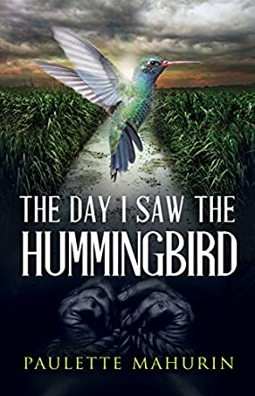 The Day I Saw the Hummingbird