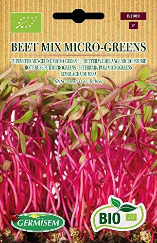 Germisem Bio Graines Betterave mélange micro-pousse